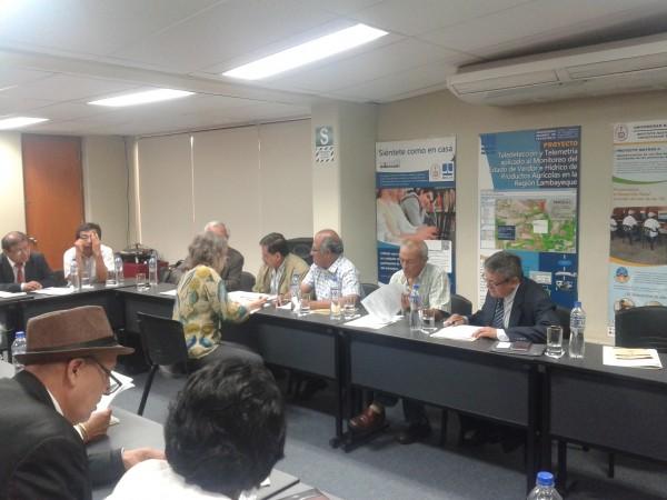 Comité Consultivo FIGMM 1