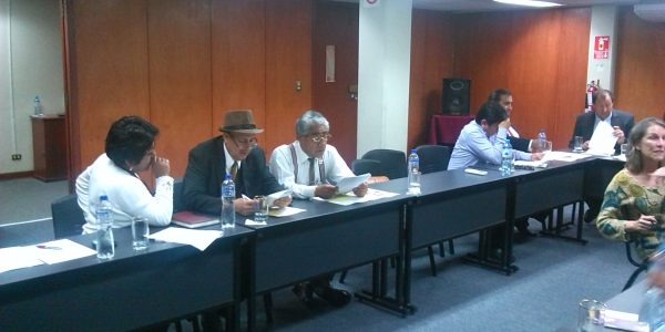 Comité Consultivo FIGMM 12