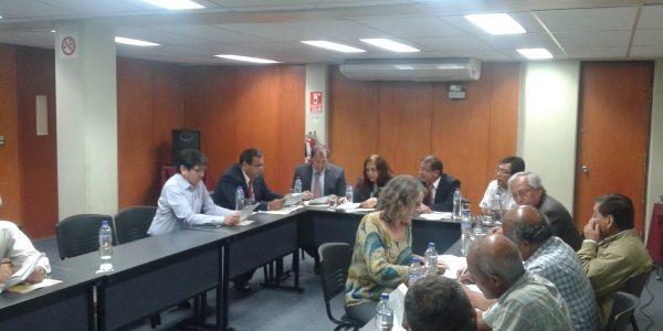 Comité Consultivo FIGMM 2
