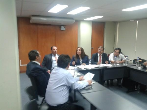 Comité Consultivo FIGMM 4