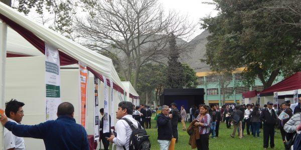 Feria FIPP 2016I 10
